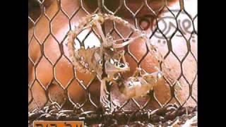Video shmates-adon leon שמעטס-אדון לאון download MP3, 3GP, MP4, WEBM, AVI, FLV November 2017