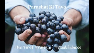 Parashat Ki Tavo: The First Fruits of Thankfulness