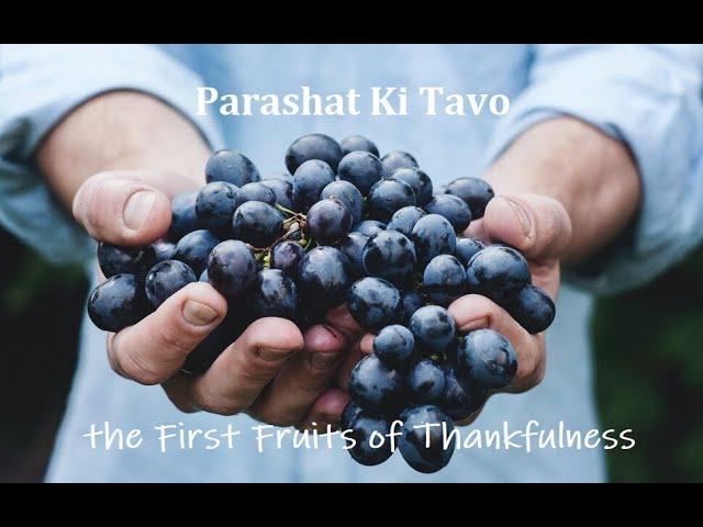 Parashat Ki Tavo: The First Fruits of Thankfulness