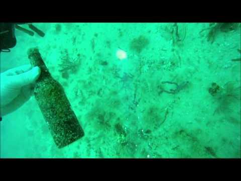 Dive #2 Fernandina Beach, FL  St. Marys, GA (7/7/12)