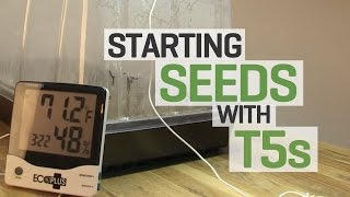 Using T5 Fluorescent Grow Lights To Start Onion Seeds Indoors