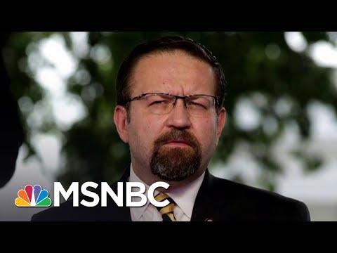 Who Is White House Aide Sebastian Gorka? | AM Joy | MSNBC