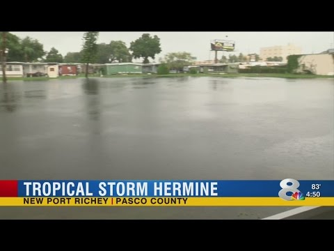 New Port Richey | Pasco County | Flooding Aftermath From Hermine