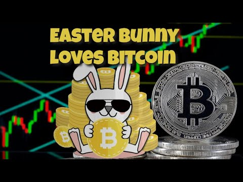 bunny cryptocurrency price