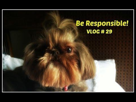 Be Responsible! Vlog #29
