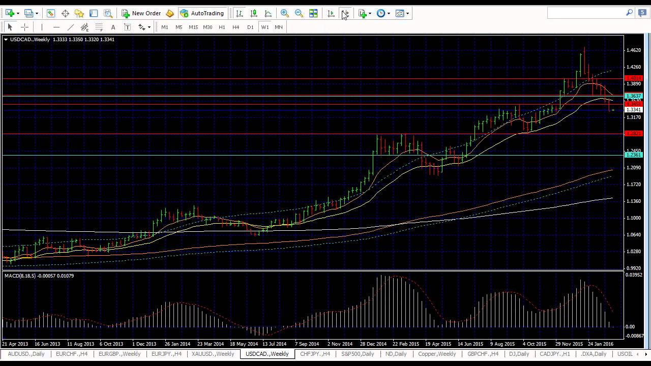 Live forex market commentary