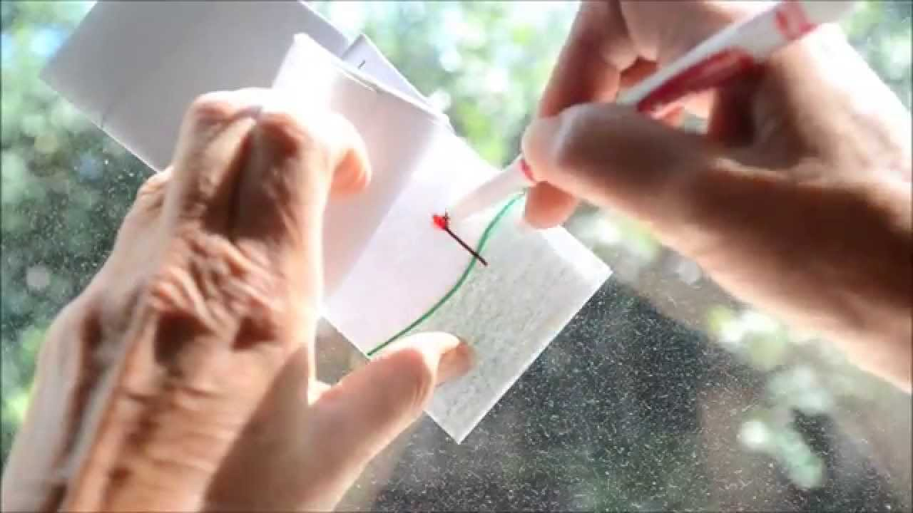 How To Make A Book Quick ~ How to make a quick easy flipbook flip book drawing of a flower