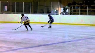 Hockeyns dag 2012: FFIK - Arboga