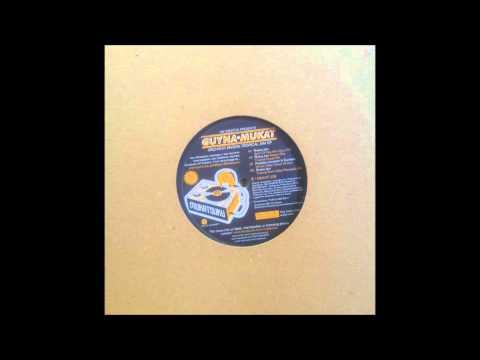 Nik Weston presents Guynamukat - Riviera Jam Spirit Of Fela Afro disco mix