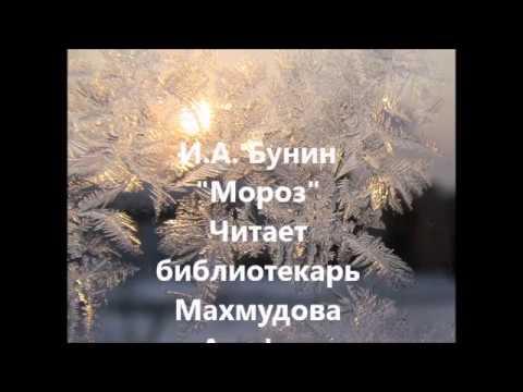 Изображение предпросмотра прочтения – АльфияМахмудова читает произведение «Мороз» И.А.Бунина
