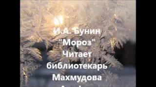 И.А.Бунин ''Мороз''