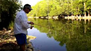 Florida Everglades Bass Fishing in the BONE DRY Alligator INFESTED Swamp!!