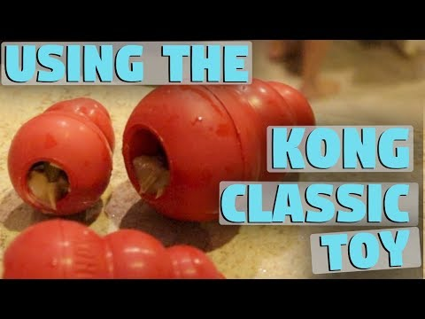 Kong Classic Dog Toy How To Use