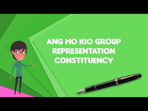 What Is Ang Mo Kio Group Representation Constituency