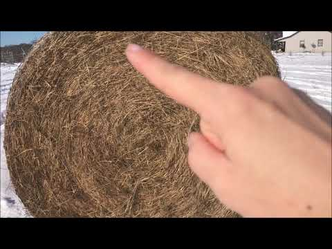 Farm Girl Friday #82 How To Unroll A Round Hay Bale By Looking At Core