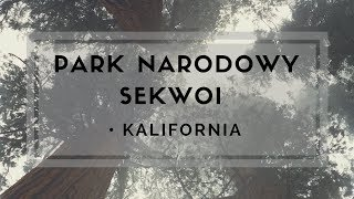 Park Narodowy Sekwoi Kalifornia / Sequoia National Park