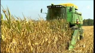 Biokraftstoffe: Pro und Contra