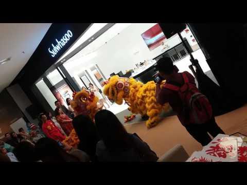 Lion dance 2017 sunway pyramid