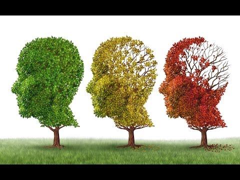 Who Am I? Understanding Alzheimer's And Dementia