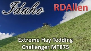 Extreme Hay Tedding with Challenger MT875 - Farming Simulator 15 MP Idaho