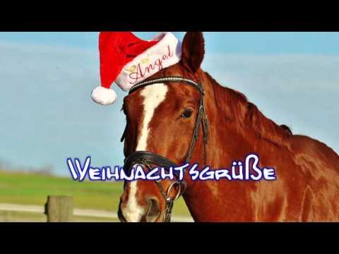 Weihnachtsgrüße lustig: Weihnachtspferd Weihnachtsgrüße