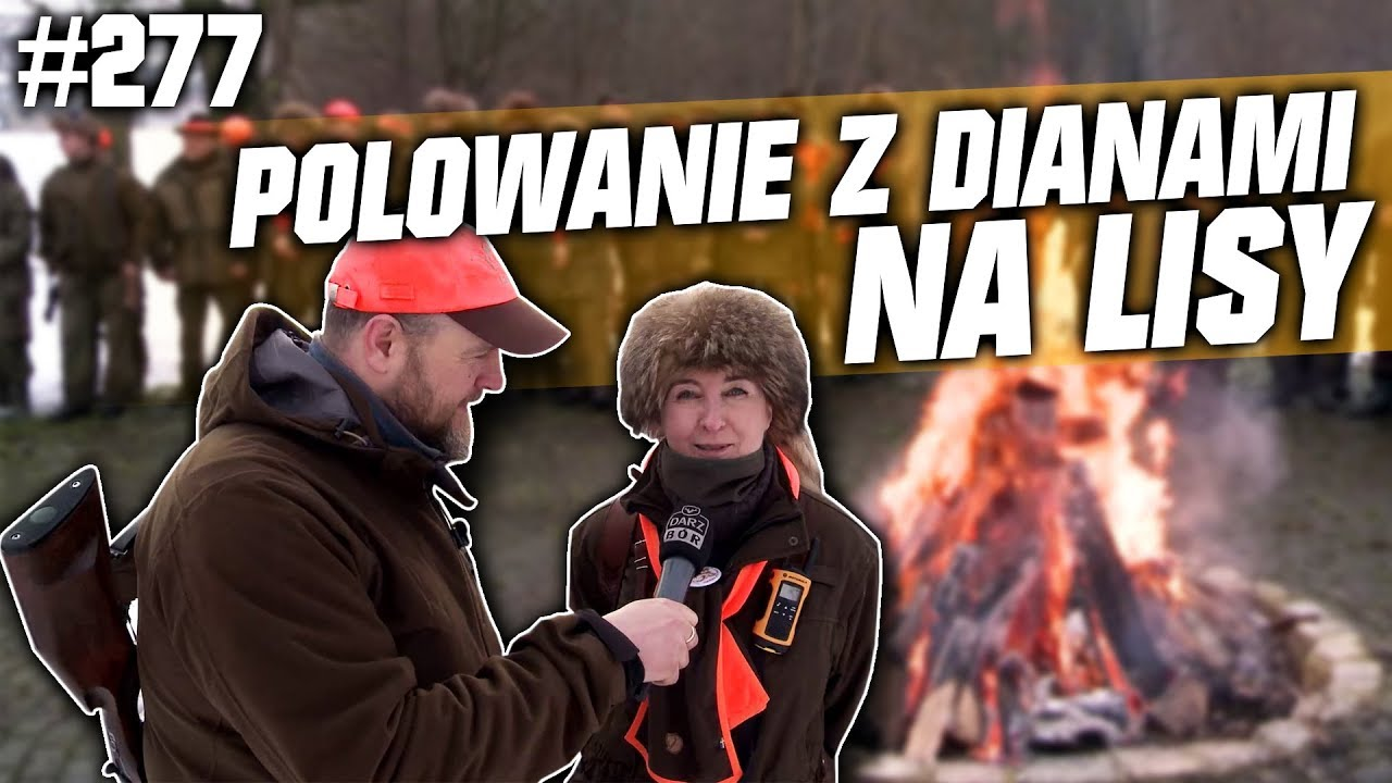 Darz Bór odc 277 – Polowanie z Dianami na lisy