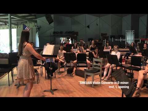 Tanglewood Music Center Violin Master Class Part 2