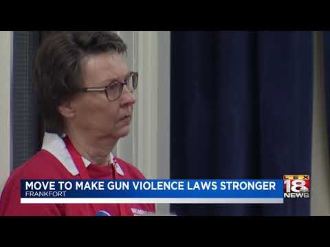 move-to-make-gun-violence-laws-stronger