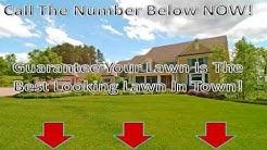 Lawn Service Jacksonville Fl - (904) 531-4777 Lawn Care Jacksonville Fl