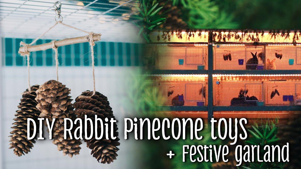 DIY rabbit pinecone toys + festive garland for my backyard meat & show  rabbits
