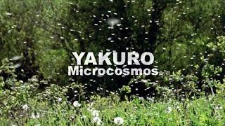 Yakuro - Microcosmos