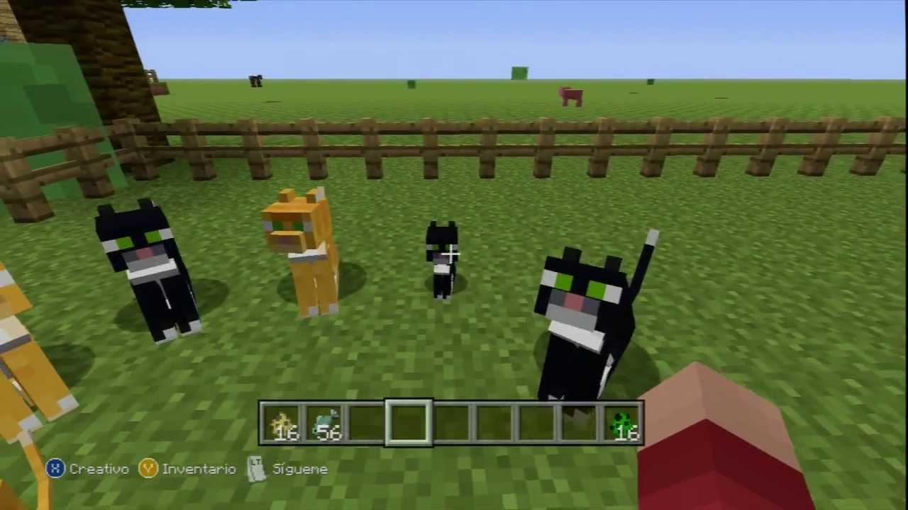 Cómo hacer un ocelote o gato de Minecraft - YouTube