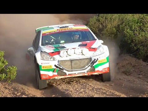 ANDREUCCI - ANDREUSSI BEST ACTION RALLY D' ITALIA SARDEGNA 2015!!!