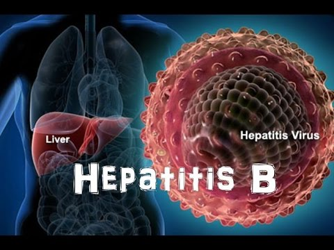 hepBsmartcom  What Is Hep B