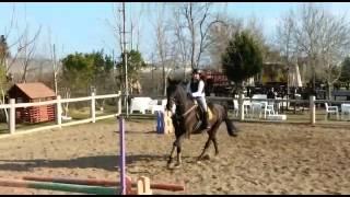 Lara Horse Club Arena Anna Hardy Ve Dicle Vaduz