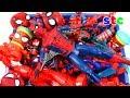 SPIDER-MAN SE DESHACE DE VENOM  El Espectacular Spiderman ...