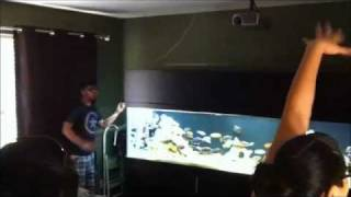 Cichlid Aquarium Canopy, Tunedis95, Motorized Canopy, And Hid Lighting.