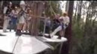 Hollybank Treetops Adventure, Tasmania