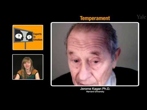 Experts in Emotion 15.1a -- Jerome Kagan on Temperament
