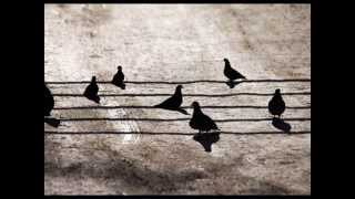 Lockwood/Lagrène  Round About Silence (Bossa pour Didier)