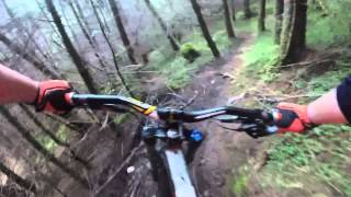 Fort William-Short forest trail-2015-2014 nukeproof pulse-downhill-mtb
