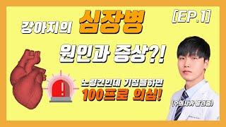 [EP.1] 심장병의 원인과 증상은?! (노령견 기…