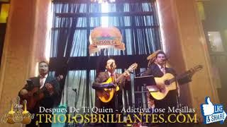 Despues De Ti Quien- La Adictiva Banda San Jose Mesillas- Trio Los Brillantes Usa