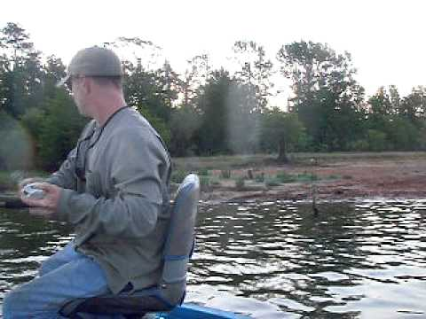 Largemouth bass fishing the stump in the lilly pads on sam for Sam rayburn lake fishing report