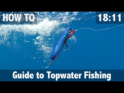 GUIDE TO TOPWATER FISHING