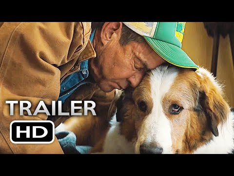 a dogs purpose full movie free download torrent