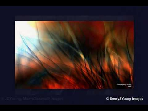 art photography abstract