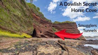 Horse Cove and Shell Cove - A Dawlish Secret