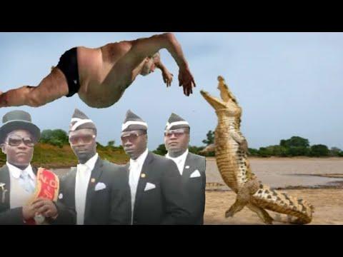 Coffin dance meme best compilation