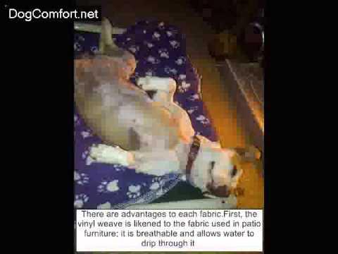 watch-kuranda-dog-beds-features-&-assembly---kuranda-dog-beds